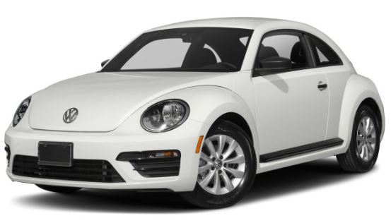 VW Beetle Wit